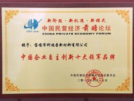 中国企业自主创新十大领军品牌