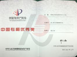 中国专利优秀奖证书